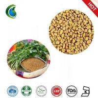 Wholesale Medicinal Testofen Fenugreek Trigonella Foenum-Graecum Seeds Extract Powder from china suppliers