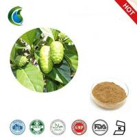 Wholesale 100% Natural Noni Fruit Extract With Morinda Citrifolia from china suppliers
