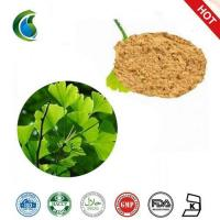 Wholesale High Quality Gingko Biloba Extract Powder from china suppliers