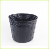 Wholesale GPN-19A Nursery Pot from china suppliers