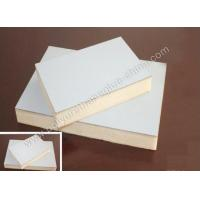 adhesive for wall insulation panel