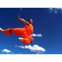 Wholesale Shaolin Kung Fu Introduction from china suppliers