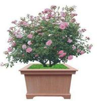 Wholesale Environmental Protection Sun-Proof Solid Flower Box For Urban Use from china suppliers