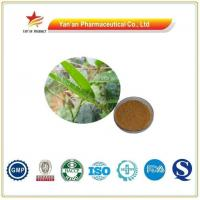 Buy cheap Wholesale Anthoxylum Nitidum P.E./Radix Zanthoxyli Extract from wholesalers