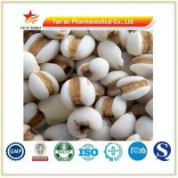 Buy cheap Factory Supply Coix Seed/pearl Barley/Semen Coisis from wholesalers