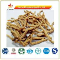 Buy cheap Thinleaf Milkwort Root-bark /Radix Polygalae/ Polygala Root Manufacturer from wholesalers