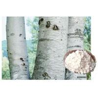 Buy cheap White Birch Extract Birch bark extract from wholesalers