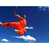 Best Shaolin Kung Fu Introduction wholesale