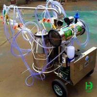 China Automatic Cow/Goat Milking Machine For Sale on sale