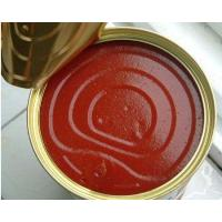 Wholesale Tomato Paste11111 Ketchup from china suppliers
