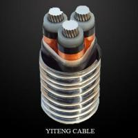 Armored Aluminum Alloy Cable