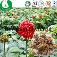 Wholesale Notoginseng Folium Extract from china suppliers