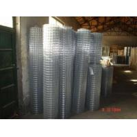 Wholesale Galvanized Welded Wire Mesh Hot-Dipped Zinc Plating Iron Wire 20 / 22 BWG from china suppliers