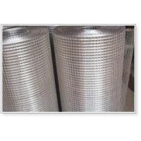 Wholesale AISI304 AISI316 Stainless Steel Wire Mesh Welded Mesh Sheets from china suppliers
