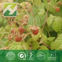 Buy cheap Raspberry Leaf Extract from wholesalers