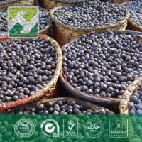 Buy cheap Acai Berry Extract 5% Vitamin C from wholesalers