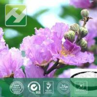 Buy cheap Banaba Leaf Extract Corosolic Acid from wholesalers
