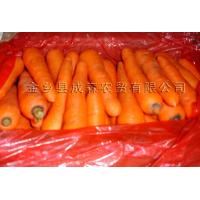 Wholesale Other products Product  Carrot from china suppliers