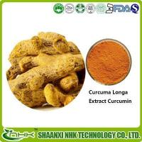 Quality Curcuma Longa Extract, Curcumin, Turmeric Extract for sale