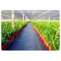 Factory Price weed control mat, Ground cover, weed barrier, landscape fabric, weed control fabric