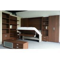 China Modern Double Folding Wall Bed With Bookshelf And Sofa,HIdden Mechanism on sale