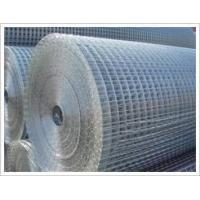Best Welded Wire Mesh & Panel wholesale
