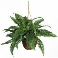 "Wholesale 18"" Boston Fern Silk Hanging Basket from china suppliers"