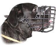 China Cane Corso Muzzle with Rubber Covered Wire Cage for Winter Activities on sale
