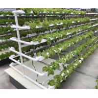 Wholesale Hydroponic Kits from china suppliers