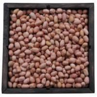 Wholesale Java Type Peants from china suppliers