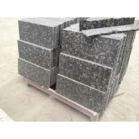 Black Shell Marble Wall Panels And Tiles for sale