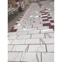 Calaeatta Marble Flooring And Wall Tiles for sale