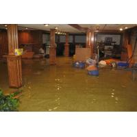 professional quick and courteous water damage clean up