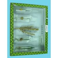 Wholesale The Life Cycle of Corn Herbarium from china suppliers
