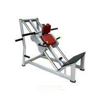 Wholesale Pin Loaded Strength Fitness Equipment Hack Squat AF—8829 from china suppliers