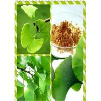 Buy cheap Plant extract Ginkgo biloba extract from wholesalers